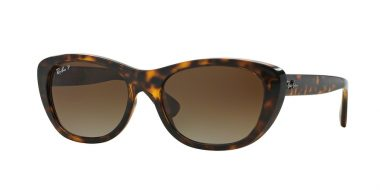 Ray-Ban RB4227 710 T5